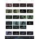 Roon Nucleus - Un recherche et des recommandations pour naviguer et profiter de sa bibliothèques musicales