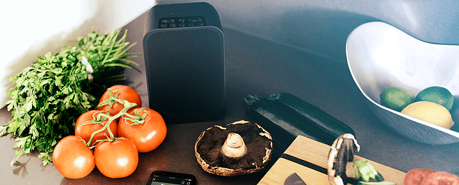 Enceinte très compacte WiFi, multiroom, bluetooth, Airplay 2 : Bluesound PULSE FLEX 2i, avec batterie en option pour un usage portable