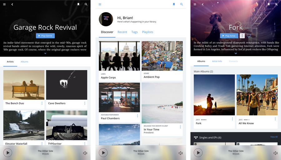 Application Roon sur iPad pour le lecteur WMiniHPA MK2